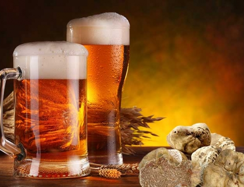 Apecchio, città del tartufo e della birra – country house Apecchio